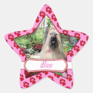 Briard Dog in Flower Garden Star Sticker
