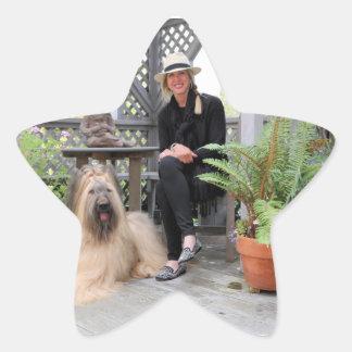 Briard Dog under Gazebo Star Stickers