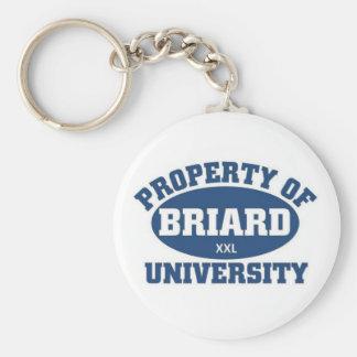 Briard  University Keychain