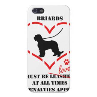 Briards Must be Loved iPhone 5 Case