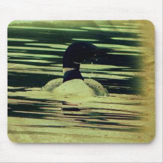 Bribón antiguo de la mirada en el agua tapete de ratones