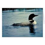 Bribón común en el agua tarjetas