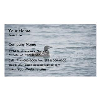 Bribón común tarjetas de visita