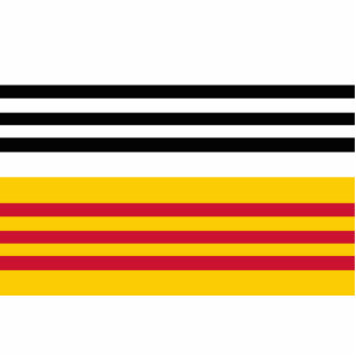 Bribón Zand de Op. Sys., bandera holandesa Fotoescultura Vertical
