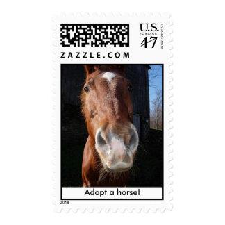 brick, Adopt a horse! Postage