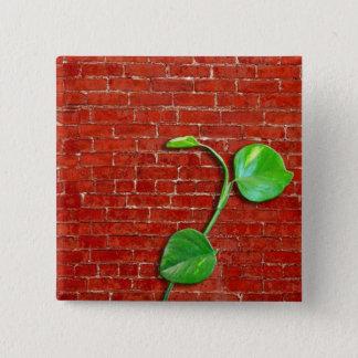 Brick-leaf button