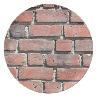 Brick stone wall design party plates