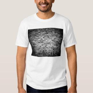 Brick Wall 2 T Shirt