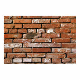 Brick Wall Background Statuette