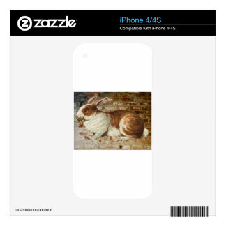 Brick Wall Bunny Rabbit Skin For The iPhone 4