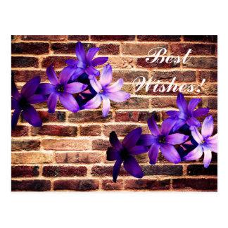 Brick Wall Flowers Card. Postcard