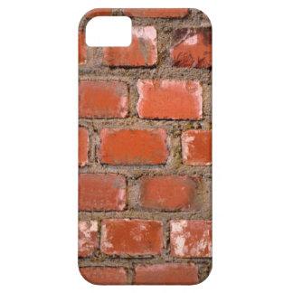 Brick Wall iPhone5 Case