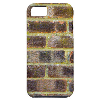 Brick Wall Texture iPhone SE/5/5s Case