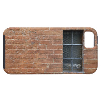 Brick wall with a typical pattern. The wall was iPhone SE/5/5s Case
