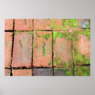 Bricks Walkway Posters