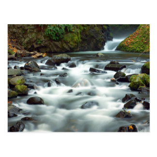 Bridal Veil Creek Postcard