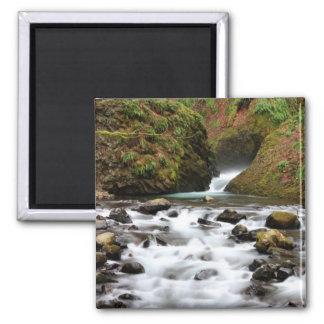 Bridal Veil Falls Creek Magnet