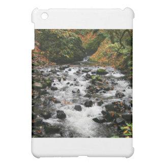 Bridal Veil Stream Multnomah Cover For The iPad Mini