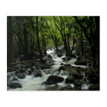 Bridalveil Creek in Yosemite National Park Acrylic Print