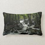 Bridalveil Creek in Yosemite National Park Lumbar Pillow
