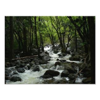 Bridalveil Creek in Yosemite National Park Photo Print