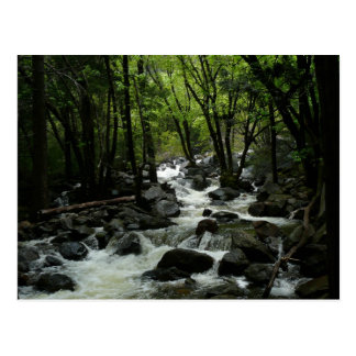 Bridalveil Creek in Yosemite National Park Postcard