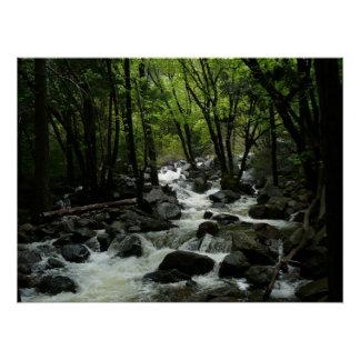 Bridalveil Creek in Yosemite National Park Poster