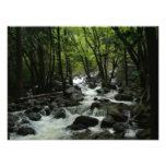 Bridalveil Creek Photo Print