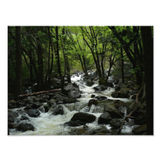 Bridalveil Creek Photo Print