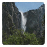 Bridalveil Falls at Yosemite National Park Trivet