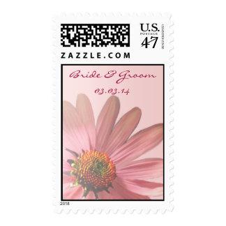 Bride & Groom Wedding Echinacea purpurea Postage