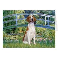 Bridge - American Foxhound Cards