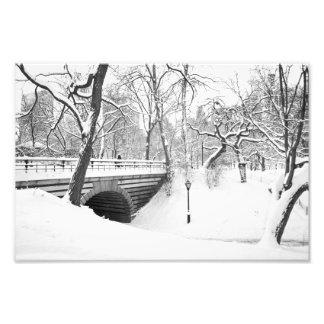 Bridge and Snow Central Park Photo Print