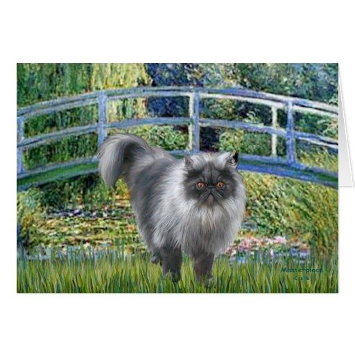 Bridge - Blue Smoke Persian cat Card
