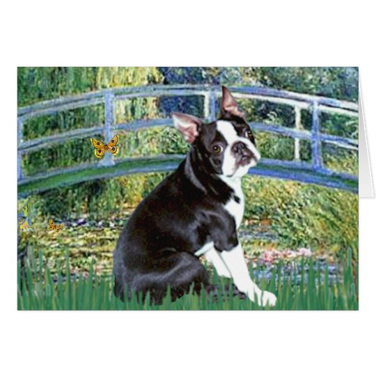 Bridge - Boston Terrier #4 Card