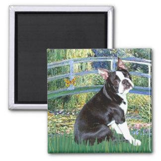Bridge - Boston Terrier #4 Magnet