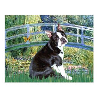 Bridge - Boston Terrier #4 Postcard
