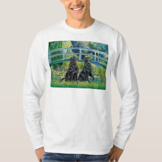 Bridge - Flat Coated Retriever (two) T-Shirt