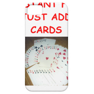 bridge fun iPhone 5 covers