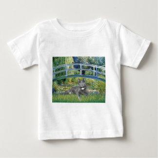 Bridge - Grey cat Baby T-Shirt
