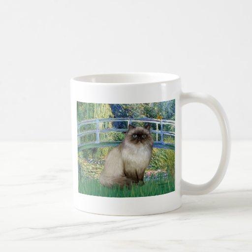 Bridge - Himalayan cat 7 Classic White Coffee Mug