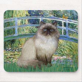 Bridge - Himalayan cat 7 Mouse Pad