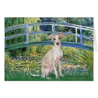 Bridge - Italian Greyhound 5 Card