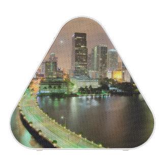 Bridge leads across waterway to downtown Miami Speaker