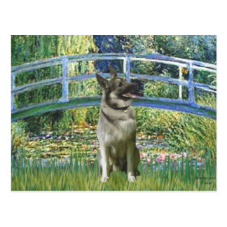 Bridge - Norwegian Elkhound Postcard