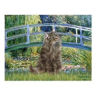 Bridge - Norwegian Forest cat Postcard