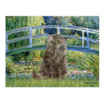 Bridge - Norwegian Forest cat Postcards
