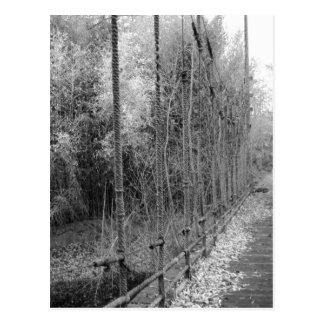 Bridge of Abandonment Postcard