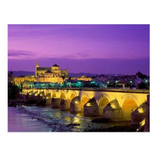 Bridge of Córdoba Across the Guadalquivir River Postcard