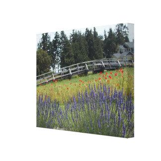 Bridge Over Lavender Fields Canvas Print